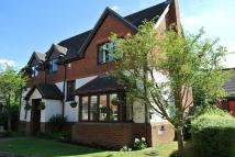 Detached property to rent in East Chapel, Tattenhoe...