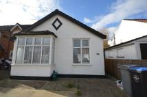 Detached Bungalow to rent in Charterhouse Avenue...