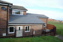 Bungalow to rent in Bruce Kirkup Road...