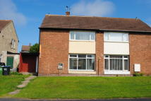 3 bed semi detached property to rent in Elliott Road, Peterlee...