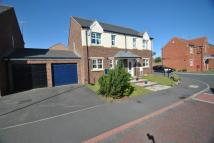 3 bedroom semi detached house in ALNMOUTH WAY, Seaham, SR7