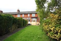 3 bedroom Terraced house to rent in Plantagenet Avenue...