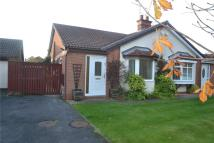Bungalow to rent in O'Neill Drive, Peterlee...