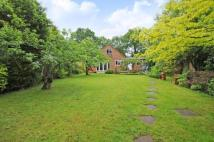 Bungalow in Sandhurst, Berkshire