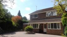 4 bedroom Detached property for sale in Blackwater, Camberley...