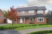 4 bed Detached house in Blackwater, Camberley...