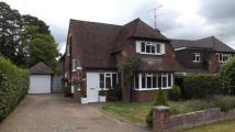 Detached property for sale in Sandhurst, Berkshire