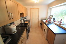 4 bed Terraced home to rent in Comet Street, Roath...