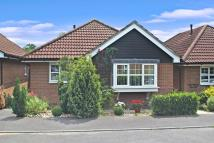 Detached Bungalow for sale in Daisy Fields, Fair Oak