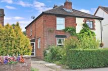 3 bed semi detached house for sale in The Avenue...
