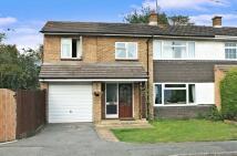 Albert Road semi detached house for sale