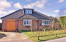 Detached Bungalow in Maddoxford Lane...
