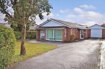 3 bedroom Detached Bungalow for sale in Chapel Road, Swanmore