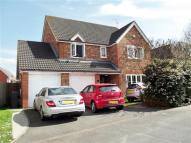 Detached house to rent in Bridport Way, Braintree