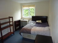 House Share in Tannington Terrace...