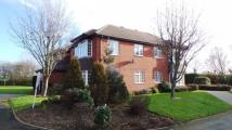 1 bed Apartment in Oaklands Croft, Walmley...