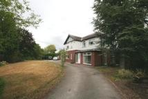 2 bed property in Park Lodge, Pulford