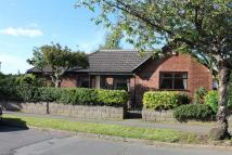 Royal Hill Road Detached Bungalow for sale