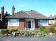 Detached Bungalow for sale in Kingsley Road, Allestree...