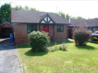 Detached Bungalow for sale in Marchington Close...