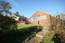 Bungalow for sale in Shepherds Close, Wembdon...
