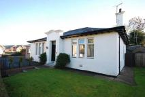 4 bedroom Detached Bungalow in Mansfield Road...