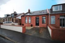 3 bed Semi-Detached Bungalow to rent in Alexandria Terrace, Ayr...