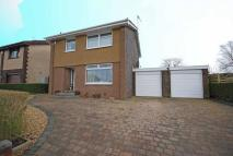 Detached property to rent in Carcluie Crescent...