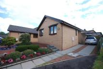 Detached Bungalow to rent in Overmills Road, Ayr...