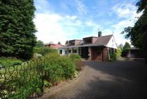 6 bed Detached home to rent in Monument Road, Ayr...