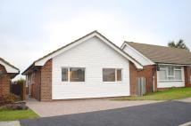 Detached Bungalow to rent in Seven Sisters Road...