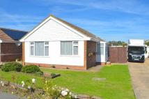 2 bed Detached Bungalow to rent in Golding Road, Eastbourne...