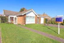 2 bed Detached Bungalow for sale in Gosford Way, Polegate...