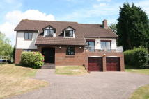 5 bedroom Detached property in Mount St Albans...