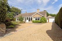 Bungalow for sale in 336 Thorpe Road...