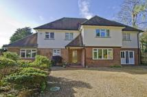 Detached property for sale in 10 Westwood Park Road...