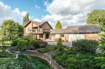 Detached home for sale in Church Walk, Marholm...