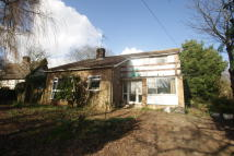Detached property for sale in Elmswell Road, Wetherden...