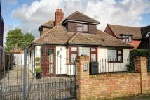 Detached Bungalow for sale in Homemead Road, Bromley...