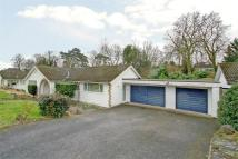 3 bedroom Detached Bungalow in St Matthews Drive...