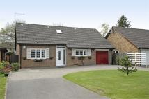 3 bedroom Detached Bungalow in Leesons Hill...
