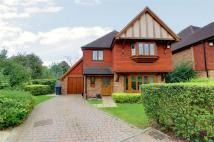 4 bed Detached home in Sycamore Place, Bickley...