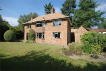 Detached property to rent in Bawnmore Road, RUGBY...
