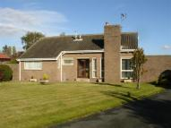 2 bed Detached Bungalow for sale in White Lodge, Leeds Road...