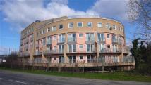 1 bed Apartment in Wooldrdige Close, Bedfont