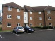 Flat to rent in Millers Drive, CM77