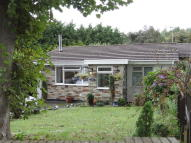 Semi-Detached Bungalow in St. Columb