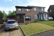 3 bed semi detached home to rent in SOUTH PARK VILLAGE -...