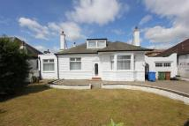 Detached Bungalow to rent in CROSSMYLOOF - Titwood Rd...