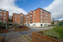 Carisbrooke Road Flat to rent